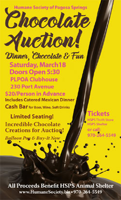 Chocolate Auction Poster 2017